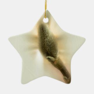 Ornamento De Cerâmica botão da magnólia