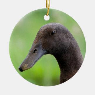 Ornamento De Cerâmica Cabeça de pato de continuar