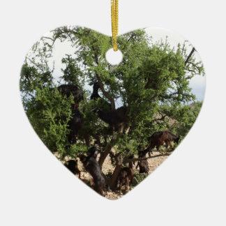 Ornamento De Cerâmica Cabras nas árvores - árvores do argão, Marrocos