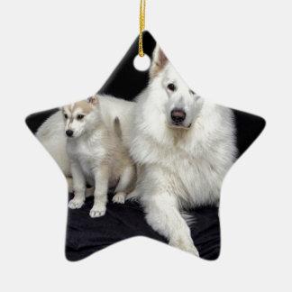 Ornamento De Cerâmica cães
