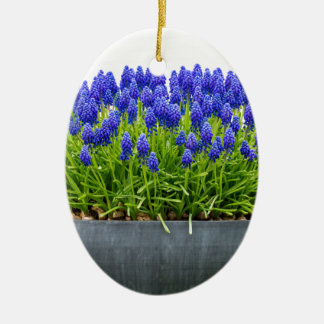 Ornamento De Cerâmica Caixa cinzenta da flor do metal com os jacintos de