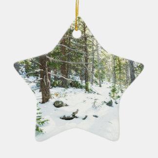 Ornamento De Cerâmica Campo de jogos nevado da região selvagem da