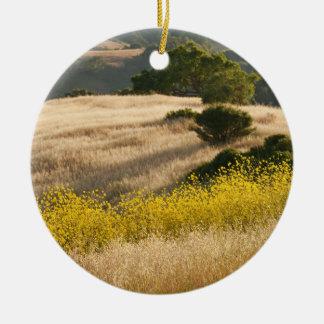 Ornamento De Cerâmica Campos do Elysium em Calero Califórnia