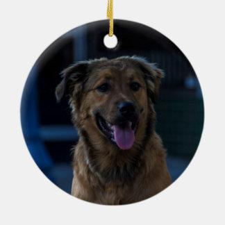 Ornamento De Cerâmica Cão do Natal