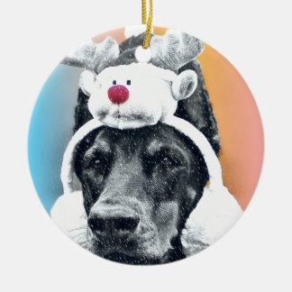 Ornamento De Cerâmica Cão que veste um chapéu da rena