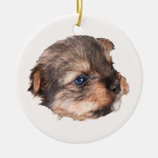 Ornamento De Cerâmica Cara bonito do filhote de cachorro de Yorkshire