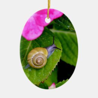 Ornamento De Cerâmica caracol