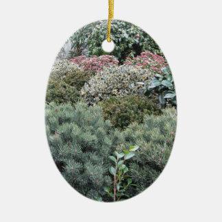 Ornamento De Cerâmica Centro de jardim com seleção de plantas de