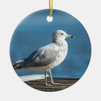 Ornamento De Cerâmica Chame-me M.Seagull