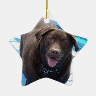 Ornamento De Cerâmica Chocolate Labrador que tem o divertimento em uma