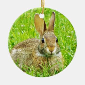 Ornamento De Cerâmica coelho