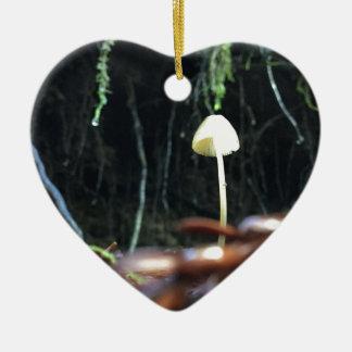 Ornamento De Cerâmica Cogumelo Spindly