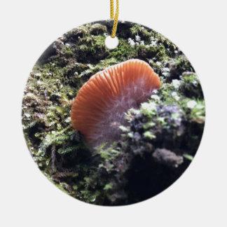 Ornamento De Cerâmica Cogumelo tormentoso da explosão dos Mycelia