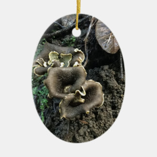 Ornamento De Cerâmica Cogumelos de florescência