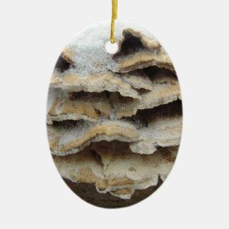 Ornamento De Cerâmica Cogumelos no inverno