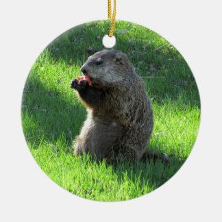 Ornamento De Cerâmica Comer de Groundhog