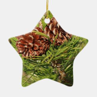 Ornamento De Cerâmica Cones do pinho