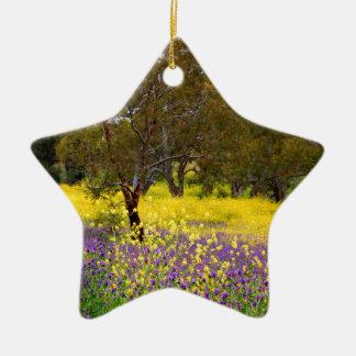 Ornamento De Cerâmica Cor do primavera