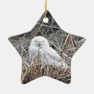 Ornamento De Cerâmica coruja nevado