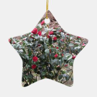 Ornamento De Cerâmica Cultivar antigo da flor do japonica da camélia