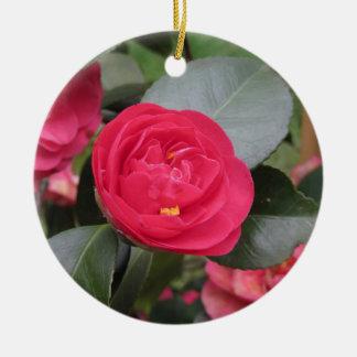 Ornamento De Cerâmica Cultivar japonês antigo do japonica vermelho da