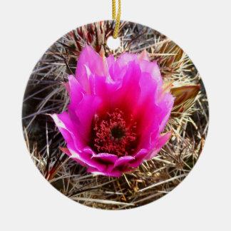 Ornamento De Cerâmica Deserto de florescência do cacto (pera espinhosa)