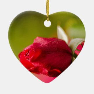 Ornamento De Cerâmica Design ascendente próximo da rosa vermelha