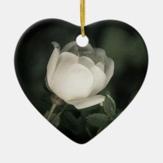Ornamento De Cerâmica Dogrose branco em um fundo escuro. Adicione seu