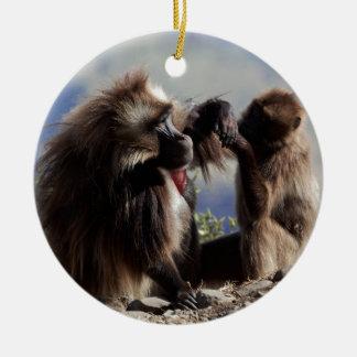 Ornamento De Cerâmica Dois babuínos do gelada (gelada de Theropithecus)