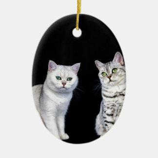 Ornamento De Cerâmica Dois gatos britânicos do cabelo curto no fundo