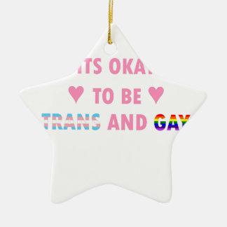 Ornamento De Cerâmica É aprovado ser o transporte e o gay (v1)