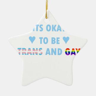 Ornamento De Cerâmica É aprovado ser o transporte e o gay (v2)