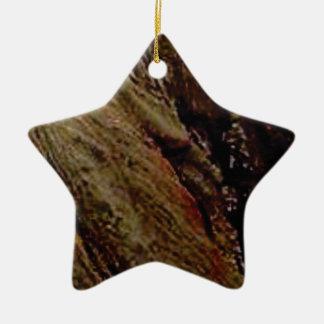 Ornamento De Cerâmica embeba a garganta colorida