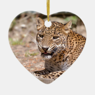 Ornamento De Cerâmica Encontro do leopardo