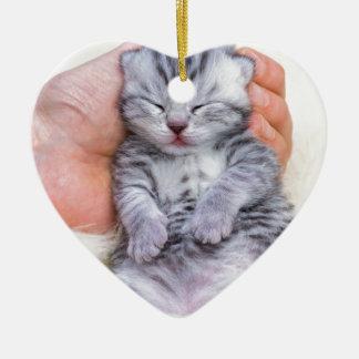 Ornamento De Cerâmica Encontro recém-nascido do gato sonolento à