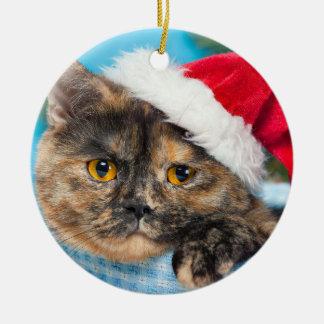 Ornamento De Cerâmica Época natalícia do purr-fect do gato da concha de