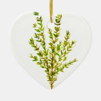 Ornamento De Cerâmica Erva botânica das ervas do tomilho