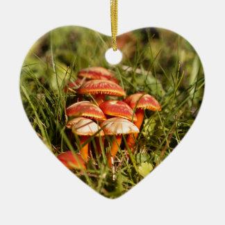 Ornamento De Cerâmica Escarlate dos fungos da capa, coccinea do