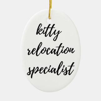 Ornamento De Cerâmica Especialista do internamento do gatinho