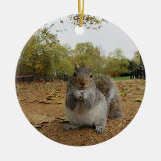 Ornamento De Cerâmica Esquilo cinzento Hyde Park.