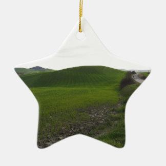 Ornamento De Cerâmica Estrada secundária sobre o rolamento de colinas