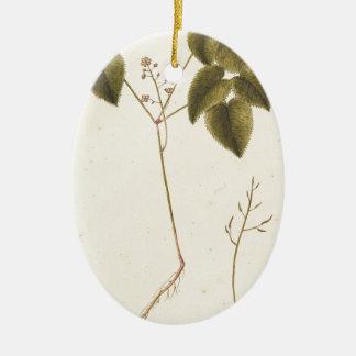 Ornamento De Cerâmica Estudo da flor - aguarela