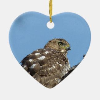 Ornamento De Cerâmica falcão