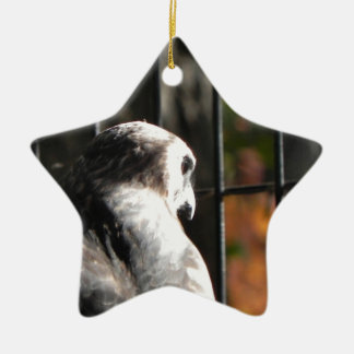 Ornamento De Cerâmica Falcão em um santuário de pássaro