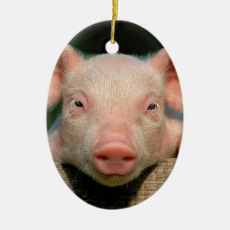 Ornamento De Cerâmica Fazenda de porco - cara do porco