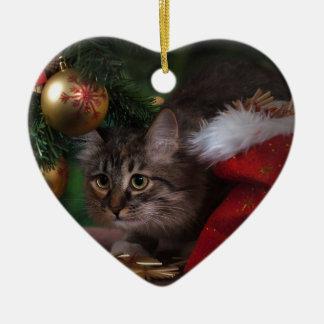 Ornamento De Cerâmica Feliz Natal do amor do gato