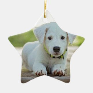 Ornamento De Cerâmica filhote de cachorro