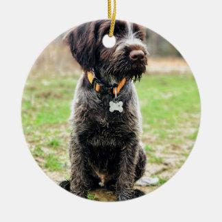 Ornamento De Cerâmica Filhote de cachorro apontar Griffon Wirehaired