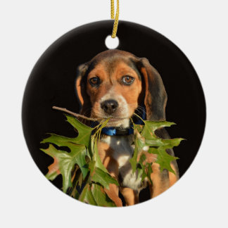 Ornamento De Cerâmica Filhote de cachorro brincalhão do lebreiro com