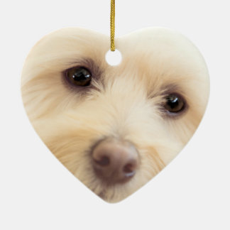 Ornamento De Cerâmica Filhote de cachorro celestial